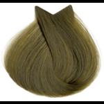 7.3 Μεσαίο Ξανθό Ντορέ